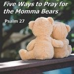 Five Ways to Pray for the Momma Bears